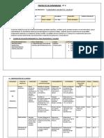 Proyecto de Aprendizaje n2 6060 Primero