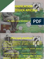 Planificacion Estrategica Apicola - Expomiel Azul 2016