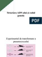 Structura ADN-Ului Si Codul Genetic