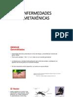 ENFERMEDADES-METAXÉNICAS.pptx