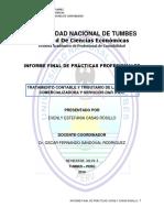 Informe Final Ppp Casas