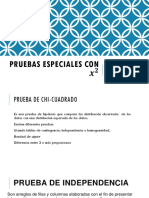 Pruebas_especiales_con_x_2.pdf
