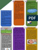 Triptico de Odontopediatria (4)