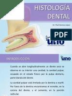 1 Histología Dental