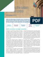 2-aci-assessing-system-internal-control-fs-uk-v4-lr.pdf