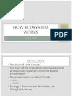 HOW-ECOSYSTEM-WORKS.pptx