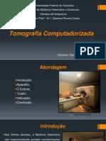 tomografia computadorizada Veterinária