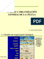 Unidad 1 Organización General de La Célula