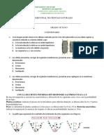 EXAMEN DE CIENCIAS NATURALES 8°.docx