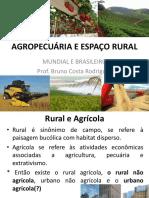 Agropecuária e Espaço Rural