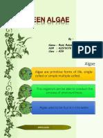 Algae EAP.pptx