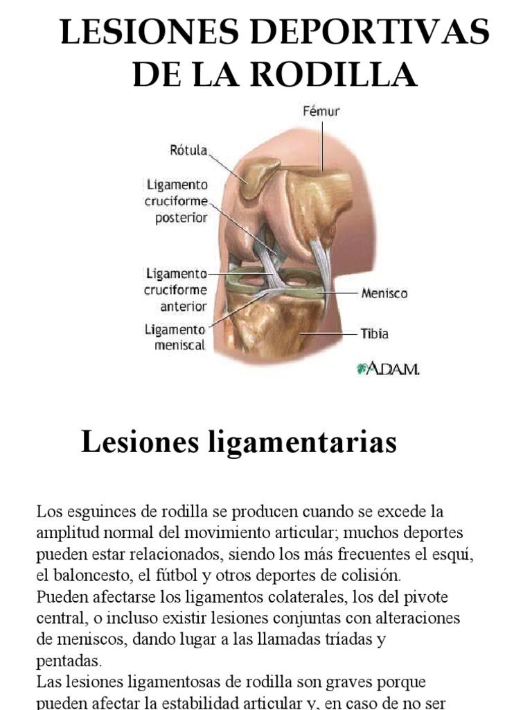 Lesiones de La Rodilla Bitterman Sebstian