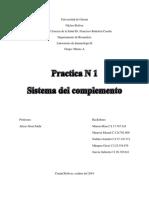 Informe Sistema Del Complemento