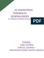Cerebro Morfologia Externa-corteza Cerebral y Arias Cortical