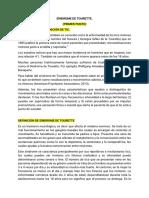 RESUMEN-DEFINITIVO-TOURETTE.docx