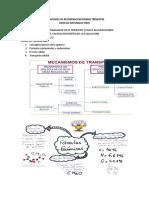 Actividades de Recuperacion Primer Trimestr1 Once