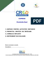2.Componenta portofoliu.docx