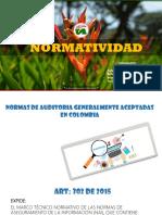 Normatividad Nia (1)