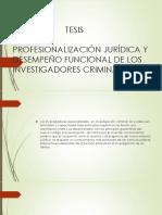 Profesionalización Jurídica y Desempeño Funcional de Los Investigadores