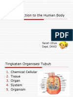 INTRODUCTION hUMAN BODY.ppt