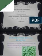 e.hernandez Present.fotosin