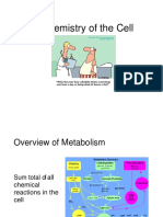 chemical-processes-prior-to-metabolism-converted.docx