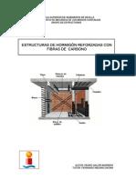 Proyecto Estructura de Hormigon Reforzado Con Fibra de Carbono