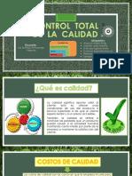 Diapositivas de Control de Calidad Exposición Final Actuales 10