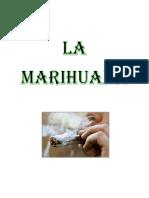 Equipo 7 Marihuana