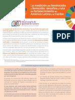 femicidio_web.pdf
