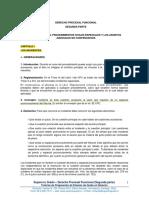 4.- Derecho Procesal Funcional (Segunda Parte) (2)