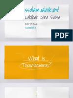 Labibah Gina Salma 18711044 Toxoplasmosis