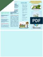 Folleto de La Propuesta Educativa Ambiental