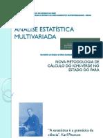 ANÁLISE-ESTATÍSTICA-MULTIVARIADA 1.pdf