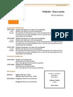 Curriculum Vitae Modelo1c Naranja Word