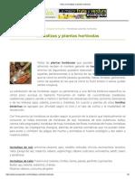 Tipos de Hortalizas y Plantas Hortícolas