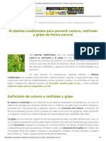 10 Plantas Medicinales Para Prevenir Catarro, Resfriado y Gripe de Forma Natural