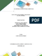 Paso 3 - Realizar La Auditoría y Generar Informe Técnico.