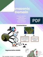 Dominio Amazónico