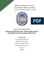 Biofiltro de Microalgas y Piedra Pómez Para El Tratamiento de Aguas Grises Domésticas