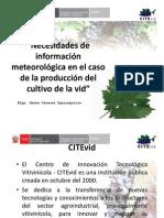 Necesidades de información meteorologica en el caso de la producción de la vid
