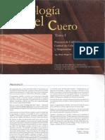 8_Tecnologia_cuero_t.1_2000.pdf