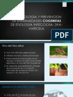 Zika101Slides Spanish
