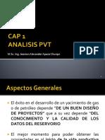 Cap 1 PVT.pdf