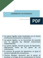 LIGAMIENTO AUTOSOMICO 1