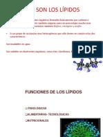 (11)LIPIDOS