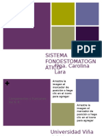 1.- Sistema Fonoestomatognático.pdf