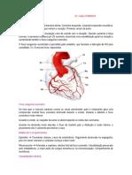 Fisiologia coronárias P2