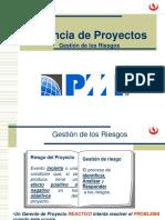 GP-Gestion de Los Riesgos 6.0