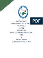 tarea I estructura organizacional-darielis morales.docx
